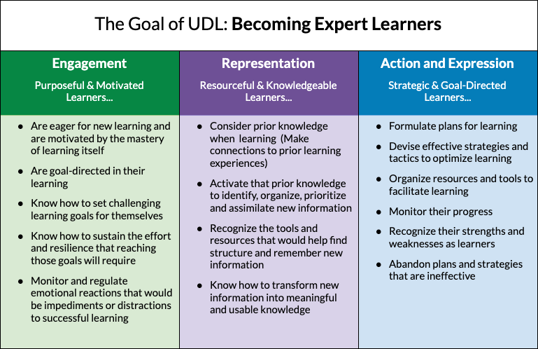 picture of the expert learner summary table