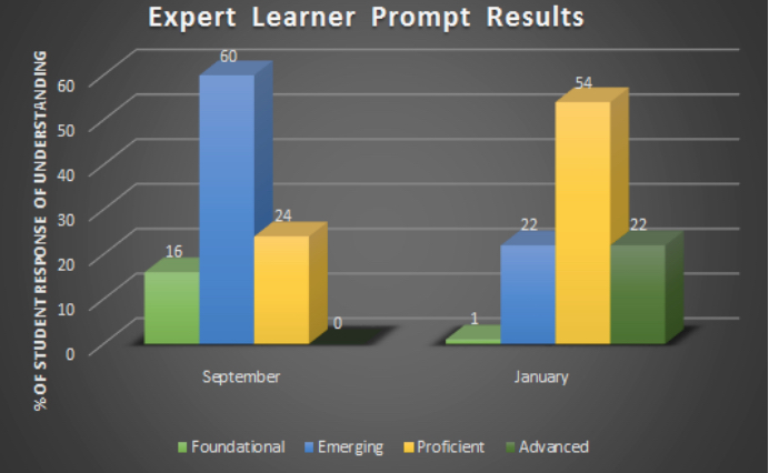 a bar graph image from the resource showing expert learner prompt results