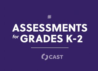 """purple background with the words """"Assessments for Grades K-2"""" and the CAST logo"""