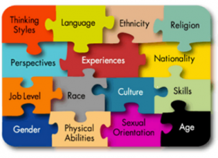 Image of puzzle pieces coming together to express learner variability.