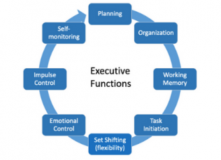 Diagram shows executive functions moving in a circle