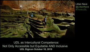 Universal Design for Learning as Intercultural Competence: Accessible, Equitable, Inclusive