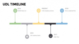 UDL Timeline