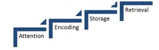 4 step process model