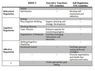 BRIEF2 EF domains compared to EF and SelfRegulation guidelines of the UDL framework.