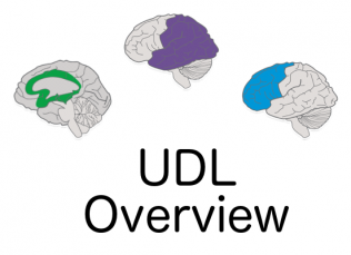 Image of 3 brains with words UDL Overview